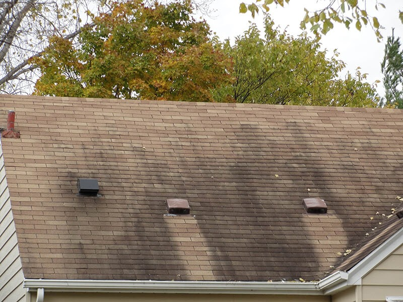 Voted Best Roofing Company What Are Roof Stains Amp How To