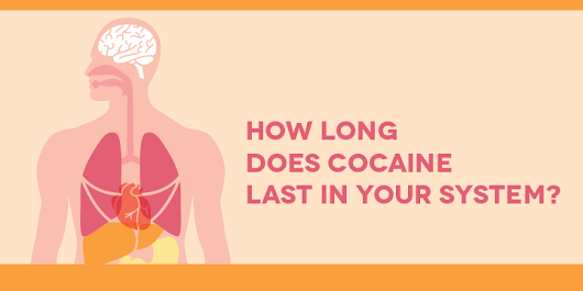 How Long Does Cocaine Last in your System?