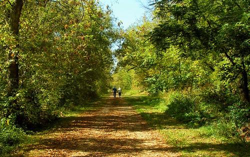 Luce Line Trail