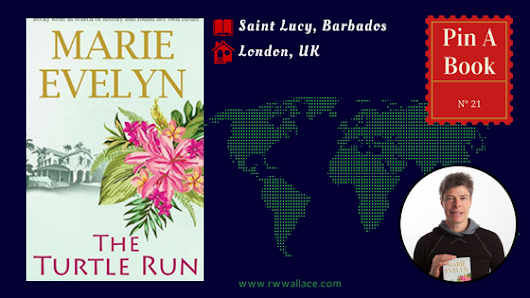 Pin a Book: The Turtle Run by Marie Evelyn | R.W. Wallace