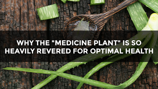 "Why this ""medicine plant"" is so heavily revered for optimal health"