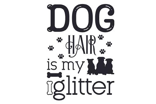 Dog hair is my glitter SVG Cut Files