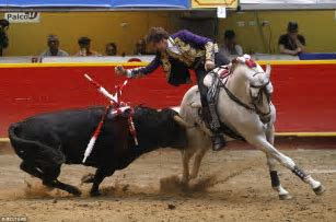Spanish bullfighter gets a little too close to his