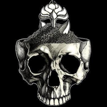 The Bull cover art