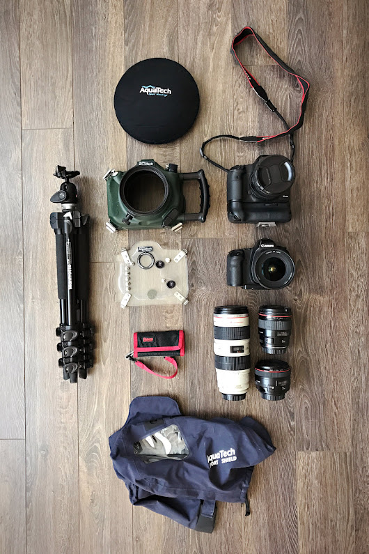 Travelling With My Gear