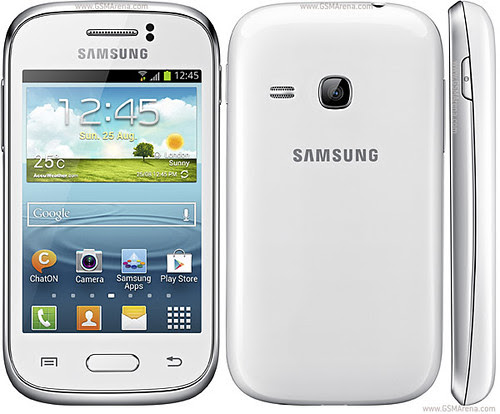 314233,xcitefun-samsung-galaxy-young-s6310-1