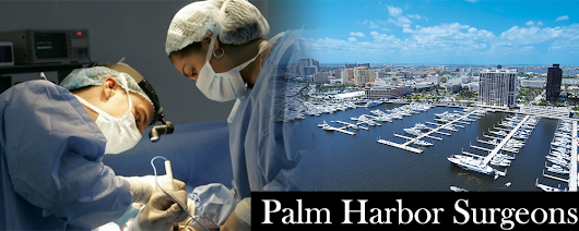 Best Palm Harbor Surgeons Specializing in Mommy Makeover