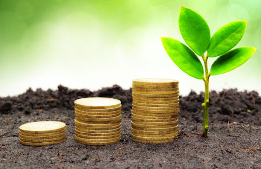 Sustainable Profitability: How Sustainable Thinking Leads to Impact & ROI
