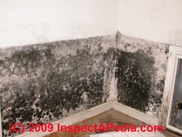 What Does Asbestos Look Like In The Attic
