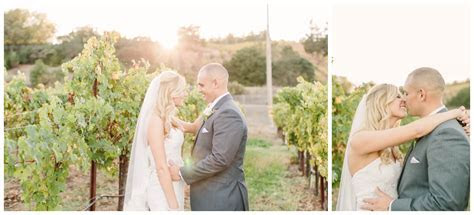 Healdsburg Wedding Photographer   Trione Winery Wedding