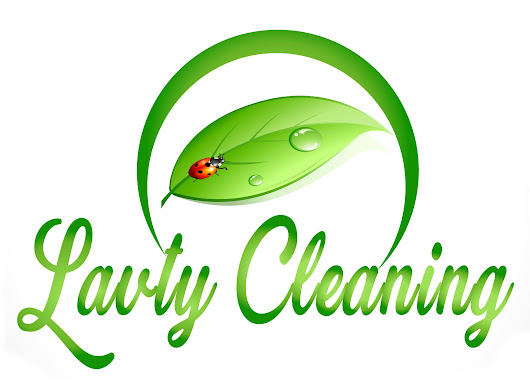 Services - carpet, hardwood and upholstery cleaning | Lavty cleaning