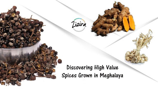 Discovering the High Value Spices Grown in Meghalaya