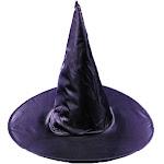 Witch Hat Taffeta