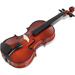 Forest Grass Full Size 4/4 Solid Wood Student Starter Violin