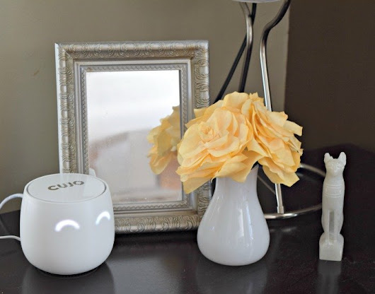 CUJO Smart Firewall: 5 Reasons You Need This Protecting Your Home Network