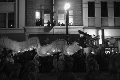 Chinese Lunar Parade - Dragons galore
