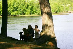 Olivia Dogs and Me by St. Croix River