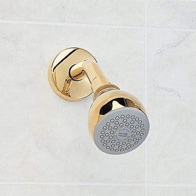 Showerheads Reviews American Standard 8888074002 Easy Clean