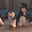 'Penguins of Madagascar' Interview - Video | The Times of India