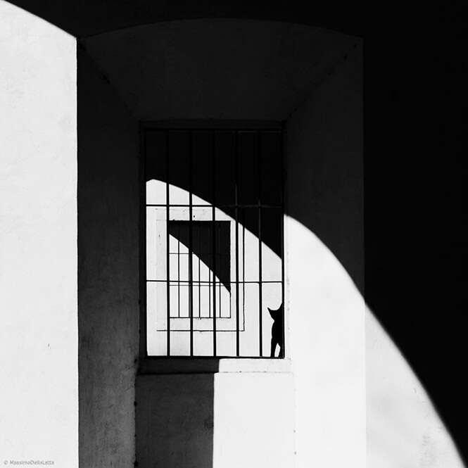 Foto: Massimo Della Latta
