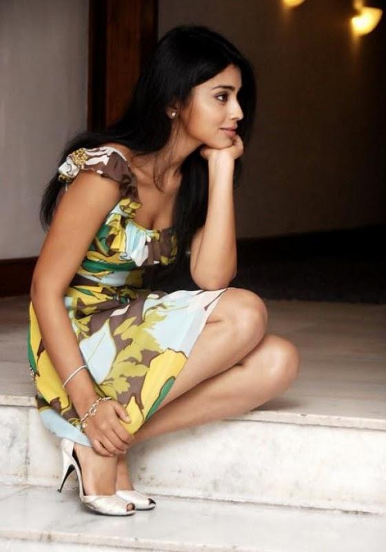 shriya saran photo gallery 13 Shriya Saran Latest Photoshoot Stills