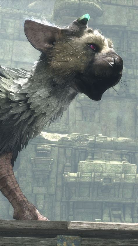 wallpaper   guardian trico  games  games