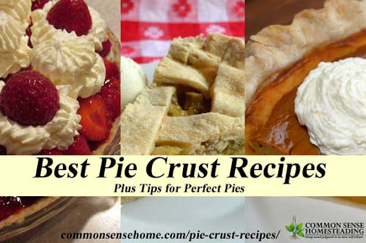 Best Pie Crust Recipes Plus Tips for Perfect Pies Every Time