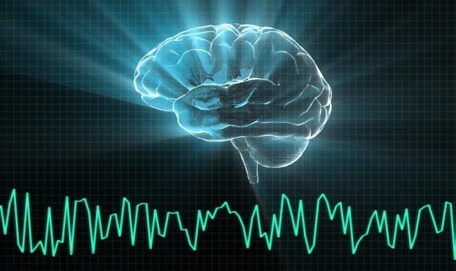 После смерти человека в его мозгу просыпаются загадочные «клетки-зомби»