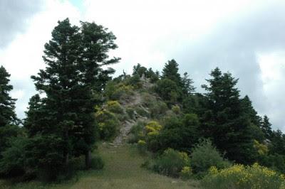Το σημείο της ενέδρας του Γ. Καρα»ισκάκη. Στο δεξί ελατόδασος εγκλωβίστηκαν οι Οθωμανοί