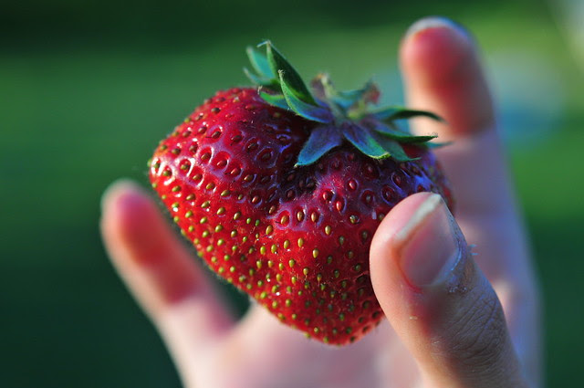4/5.2011 - the first strawberry