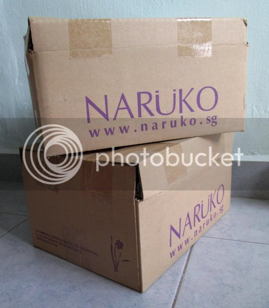 photo NarukoShareWin02.jpg