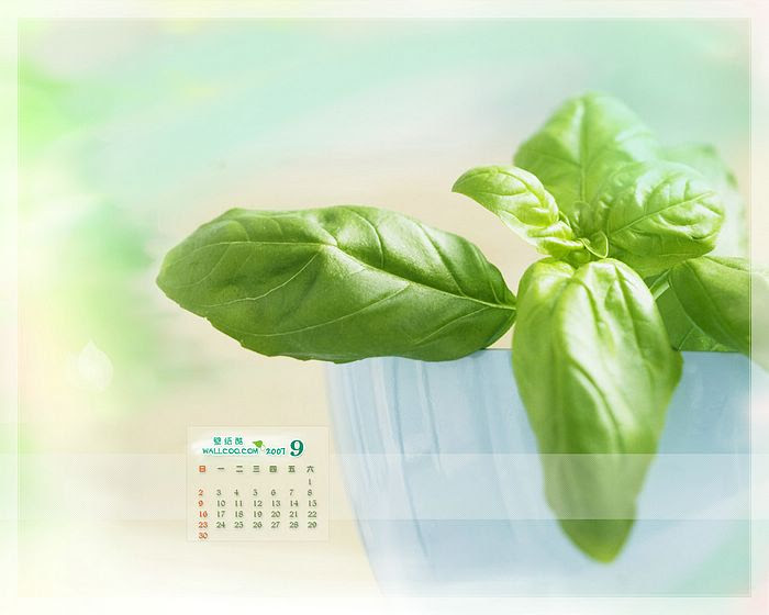 Calendar Wallpaper Maker : News maker calendar wallpaper september