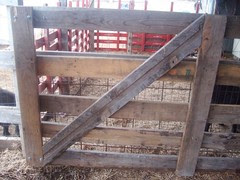 Finished gate