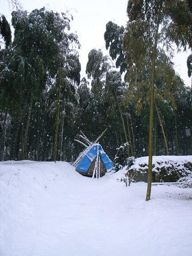 A snowy day