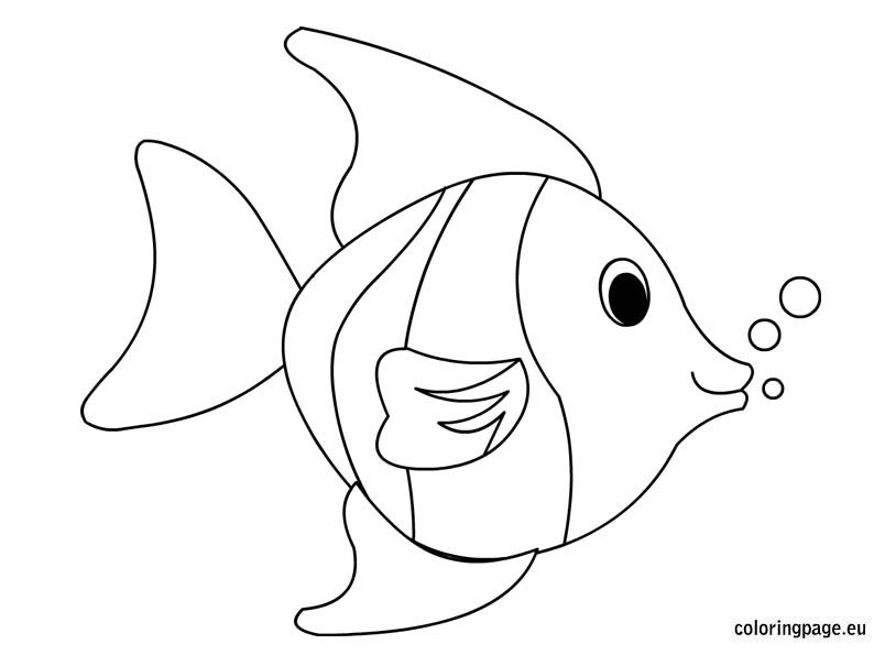 Tropical fish coloring page - Coloring Page