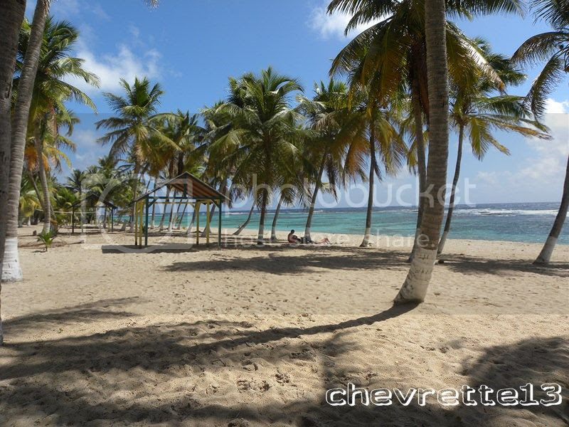http://i1252.photobucket.com/albums/hh578/chevrette13/Guadeloupe/DSCN7968Copier_zps4e9312f1.jpg