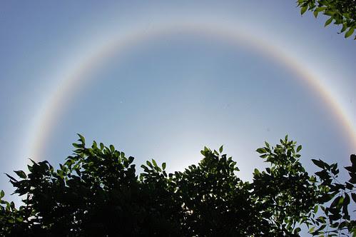 ring around the sun.jpg