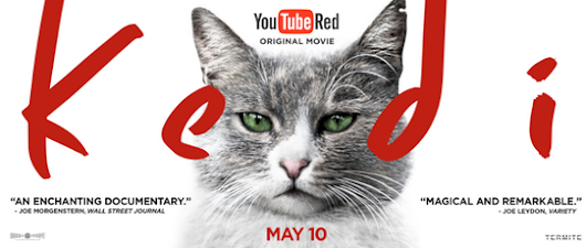 """Kedi,"" the purrfect film to curl up and watch on YouTube Red May 10! 