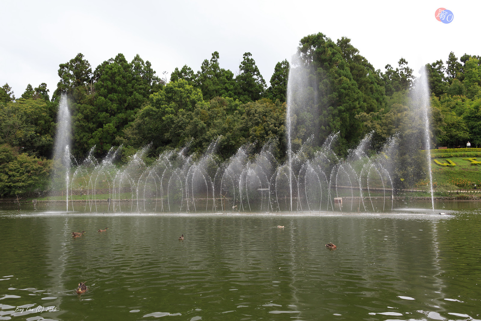 WATER_BING5554_LR