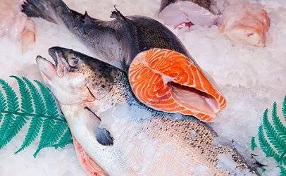 Researchers find dangerous tapeworms in Alaskan salmon | Food Safety News
