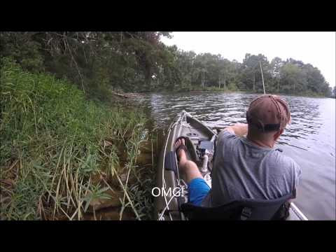 Simply Fishing-OMG!