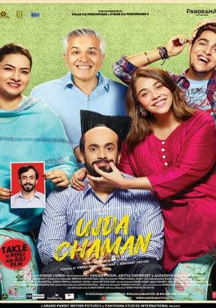 Download Ujda Chaman 2019 Pre DVDRip Full Hindi Movie Download 720p