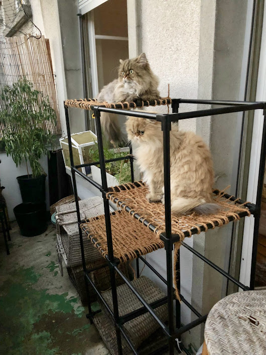 DIY Balcony Cat Tower | Meow Lifestyle