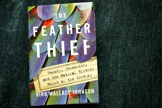 'A Catastrophic Theft From Humanity': An Author's Mission To Find Stolen Feathers