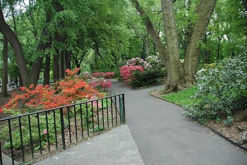 Entrance to the shade gardens of the Osborne Garden