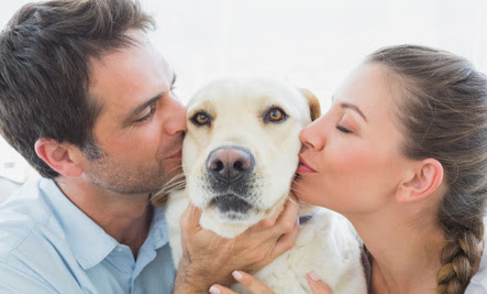 Why Do Dogs Get Upset When We Hug or Kiss Other People?
