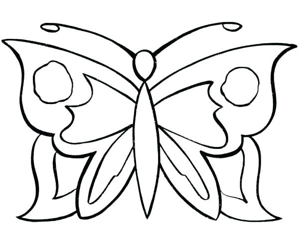 8800 Top Big Butterfly Coloring Pages For Free