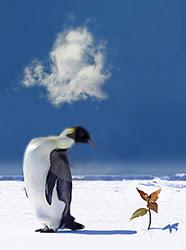 Global Warming Antarctica