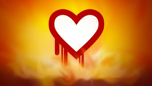 "What the ""Heartbleed"" Security Bug Means For You"