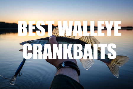 Catching More Walters On The Best Crankbaits For Walleye - Top 7 -